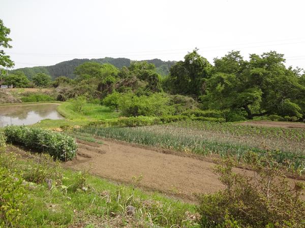 『下野宮民有地イメージ2』の画像