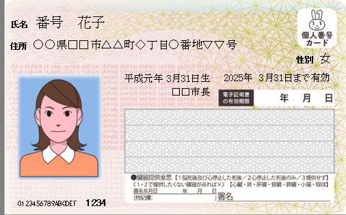 通知カードC