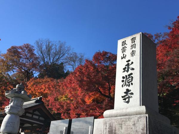 『永源寺 1111 1』の画像