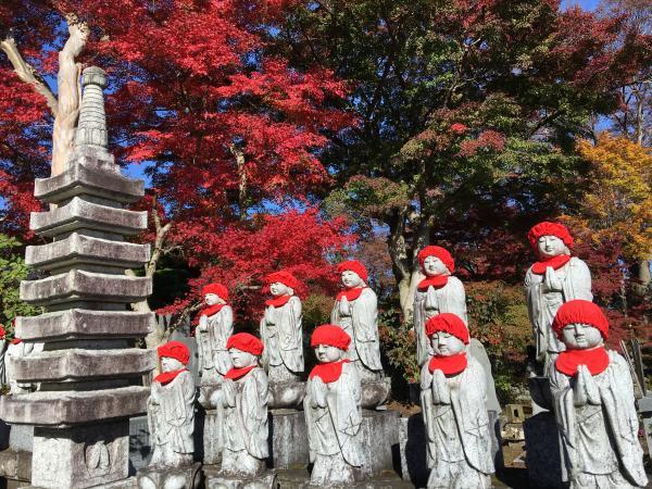 『永源寺 1111 5』の画像