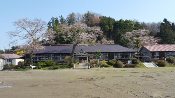 『上岡小桜0406』の画像