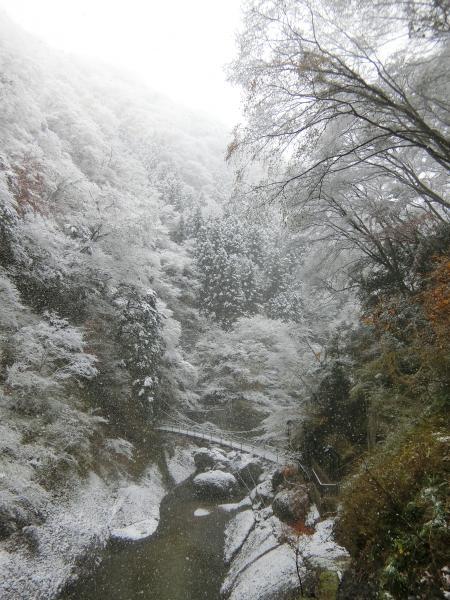 『袋田の滝11242』の画像