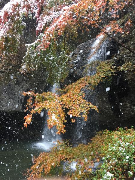 『月待の滝11242』の画像