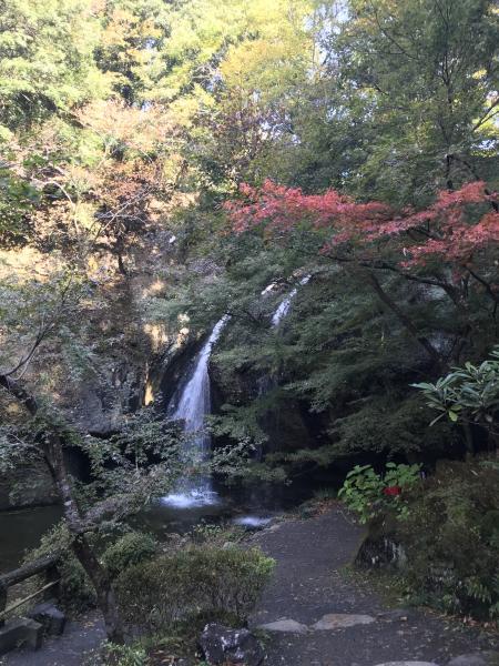 『20171106月待の滝(1)』の画像