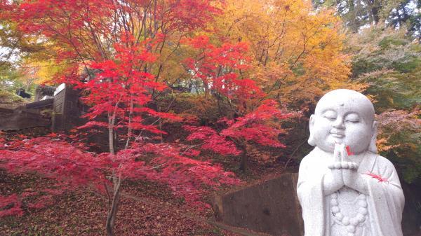 『1114-永源寺(1)』の画像