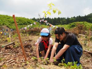 『木を植える』の画像